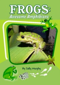 Frogs Awesome Amphibians