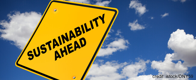 Practical Ways to Implement Sustainability in your School